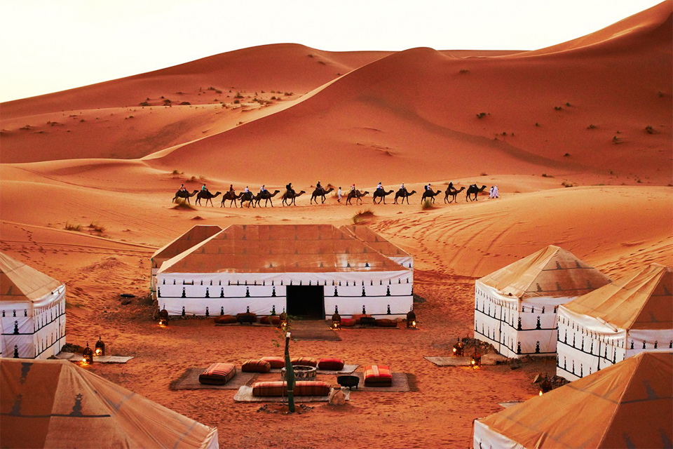 33-desierto-campamento-de-haimas-y-caravana-de-dromedarios